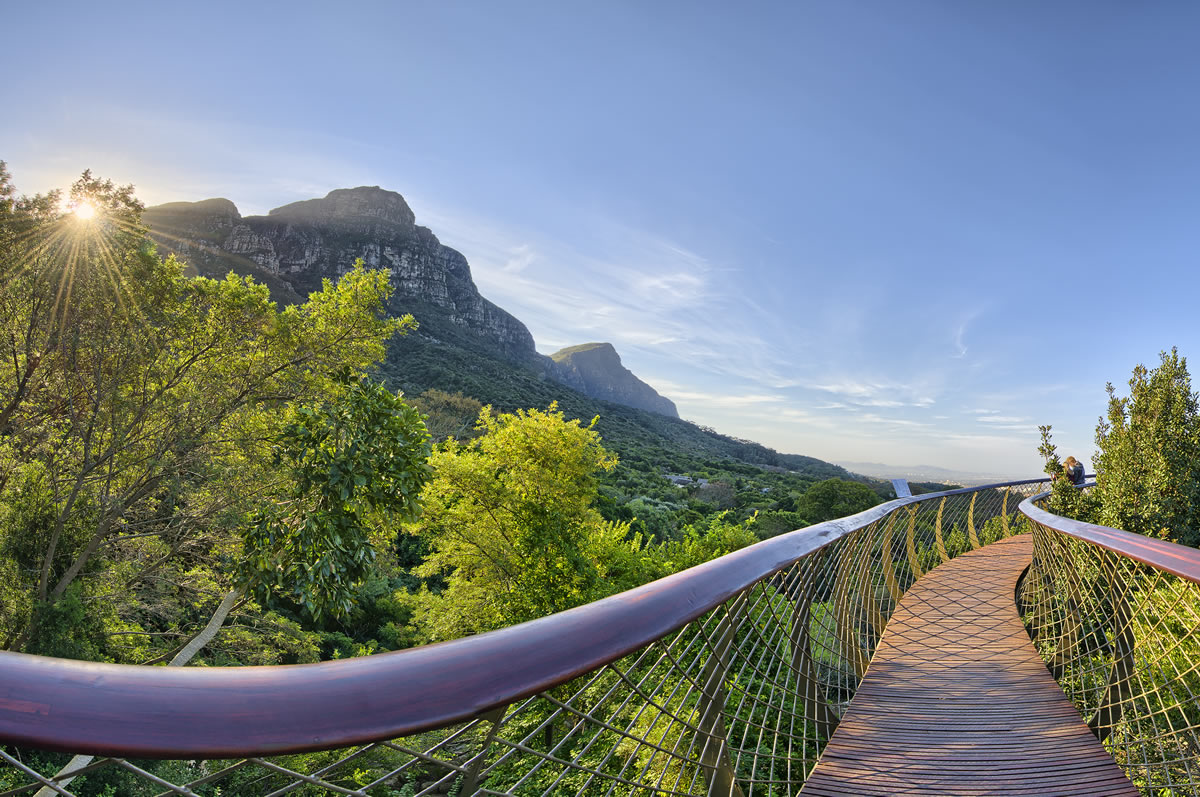 Welcome To Atlantic Breeze Local Attractions Kirstenbosch Gardens
