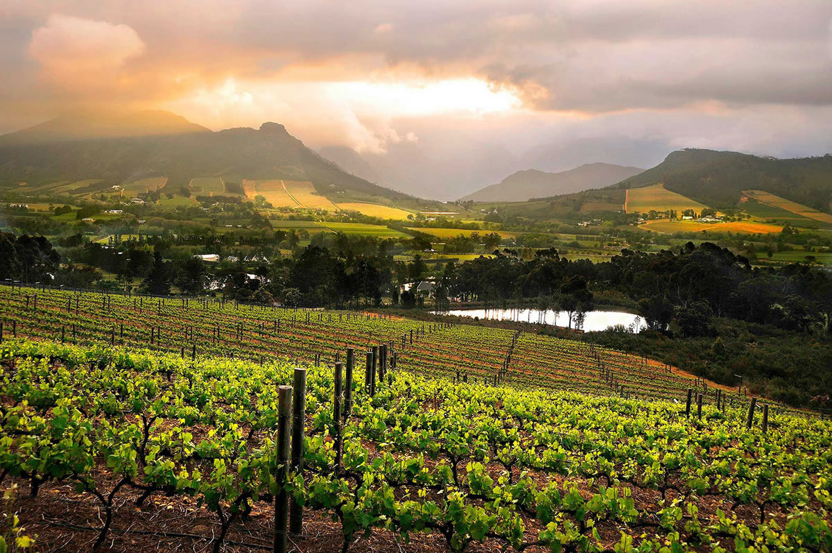 Welcome To Atlantic Breeze Local Attractions Cape Winelands